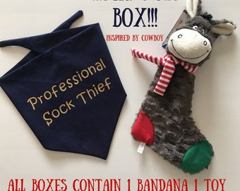 Mr. Fox Box - Sock Thief