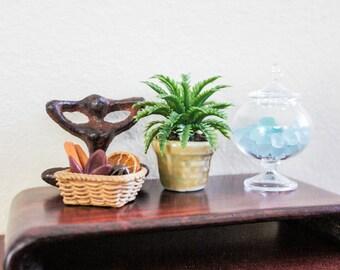 Small Fern in Basket Weave Pot