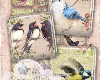 80% Off Spring Sale Shabby Chic Birds 1 Inch Digital Collage Sheet Digital Images for Jewelry Making 1 x 1 Scrabble Tile Square Tiles Instan