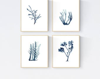 Set of 4 Seaweed Watercolour Prints, Indigo Blue Seaweed, Marine Plant Prints, Beach house Decor, Coastal Wall Art Interior Decoration
