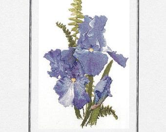 The Silver Lining - Sapphire Hills - Iris - Counted Cross Stitch Chart - Designer Marc Saastad