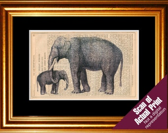 2 Elephants  print on upcycled Vintage Page
