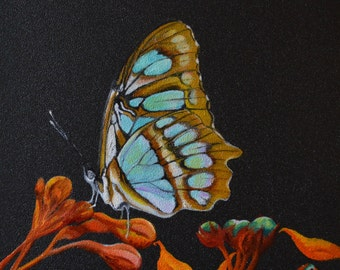 RESERVED -Malachite Butterfly - Papillon Malachite - Siproeta stelenes - Oil painting on wood