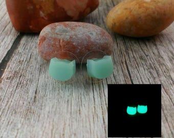 Animal earrings Glowing stud earrings Glow in the dark Post earrings Cat lover gift Turquoise earring Beauty gift Cat jewelry wildlife
