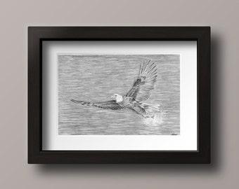 Eagle Print - Eagle Art - Eagle Artwork - Eagle Decor - Eagle Gift - Bald Eagle - Flying Eagle - Bald Eagle Decor - Bald Eagle Print - Eagle