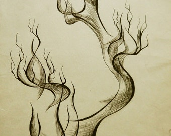 Tree Sketch. Original Tree Drawing. Tree Line Drawing. Nature Drawing. Tree Illustration. Modern Tree Drawing. Branches Drawing.