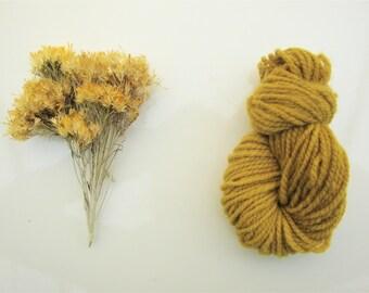 Natural Dye Sample Kit - Rabbitbrush