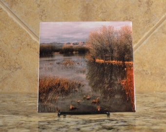 Ceramic Trivet - Bosque de Apache Landscape - New Mexico - Photograph on a tile - Trees Reflected in Water - Lake Scenery