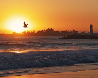 Santa Cruz, California:  A Bird Flying into the Sun between two Lighthouses during Sunset.  Canvas Aluminum or Paper Prints.