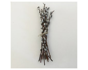 Pussy Willow Branches - Bundles of 12  -  Wedding Decor  12-13 inches, Easter, Spring, Mother's Day, Natural Hand Picked & Sorted in  Maine