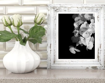 black and white flower photography, orchid wall art print, floral poster, nature photo, instant digital download, modern printable artwork