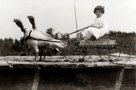 Vintage Girl In Cart Pulled By Turkeys Unusual Funny Happy