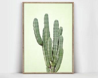 Cacti Print - Cactus Art - Cactus Poster - Cactus Wall Art