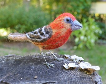 Herr Haus Finch, Nadel gefilzt Faser-Vogel