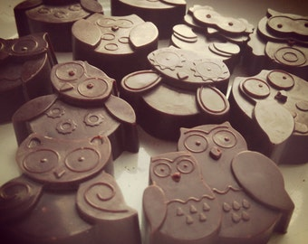 Mint Raw Chocolate Owls...for your innner wisdom!