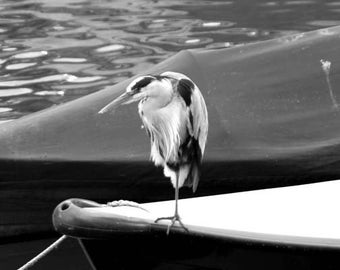My London Boat - Original Signed Fine Art Photograph