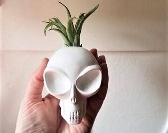 Alien head planter, air plant holder, grey alien, I want to believe, alien head candle holder, alien gift