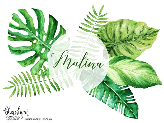 Tropical Leaves Clipart Watercolor Monstera Banana Leaf Palm Commercial Use CL100 From