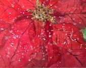 Winter Poinsettia Waterco...