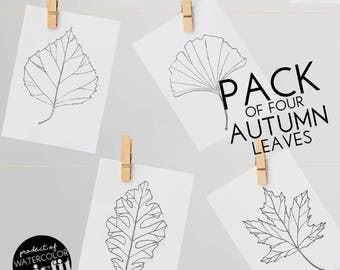 Autumn Leaf Pack