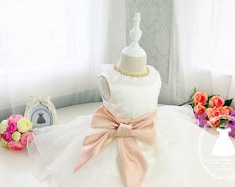 HOT!! Toddler/Infant/Baby/Newborn Flower Girl Dress, Glitz Pageant Dress, Tutu Dress, Birthday Dress, PD028