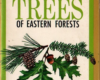 Important Trees of Eastern Forests + Rebecca Merrilees + 1968 + Vintage Reference Book