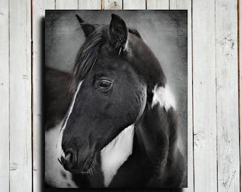 The Horses Portrait