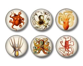 Octopus Art - Fridge Magnets - Sea Life Magnets - 6 Magnets - 1.5 Inch Magnets - Kitchen Magnets