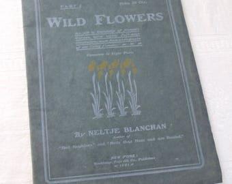 Vintage Booklet Wild Flowers Neltze Blanchan 1901