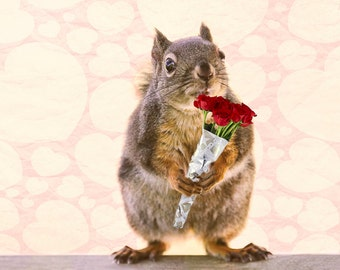 Valentines Day Gift, Romantic Gifts, Funny Gift for Her, I Love You, Squirrel Print, Love Print, Love Hearts, Funny Gift, Red Roses Bouquet