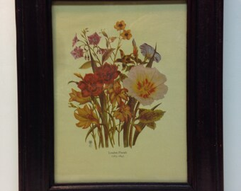 Loudon Florals 1783-1843 Print by Jane C. Loudon