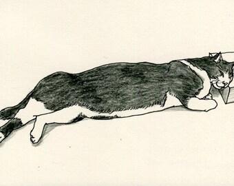 Cat original drawing - P021November2015