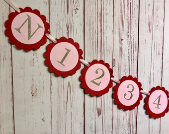 Monthly Photo Banner, NB to 12 Months, Pink 1st Birthday Banner, First Year Banner, 12 Month Banner, Milestone Banner, 1st Birthday Girl