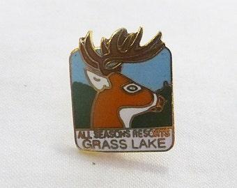 Vintage all seasons resorts grass lake Michigan pin souvenir