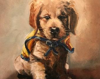 First Cape CCI Puppy