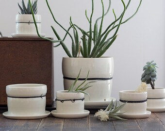Large Porcelain Planters with Black Linen