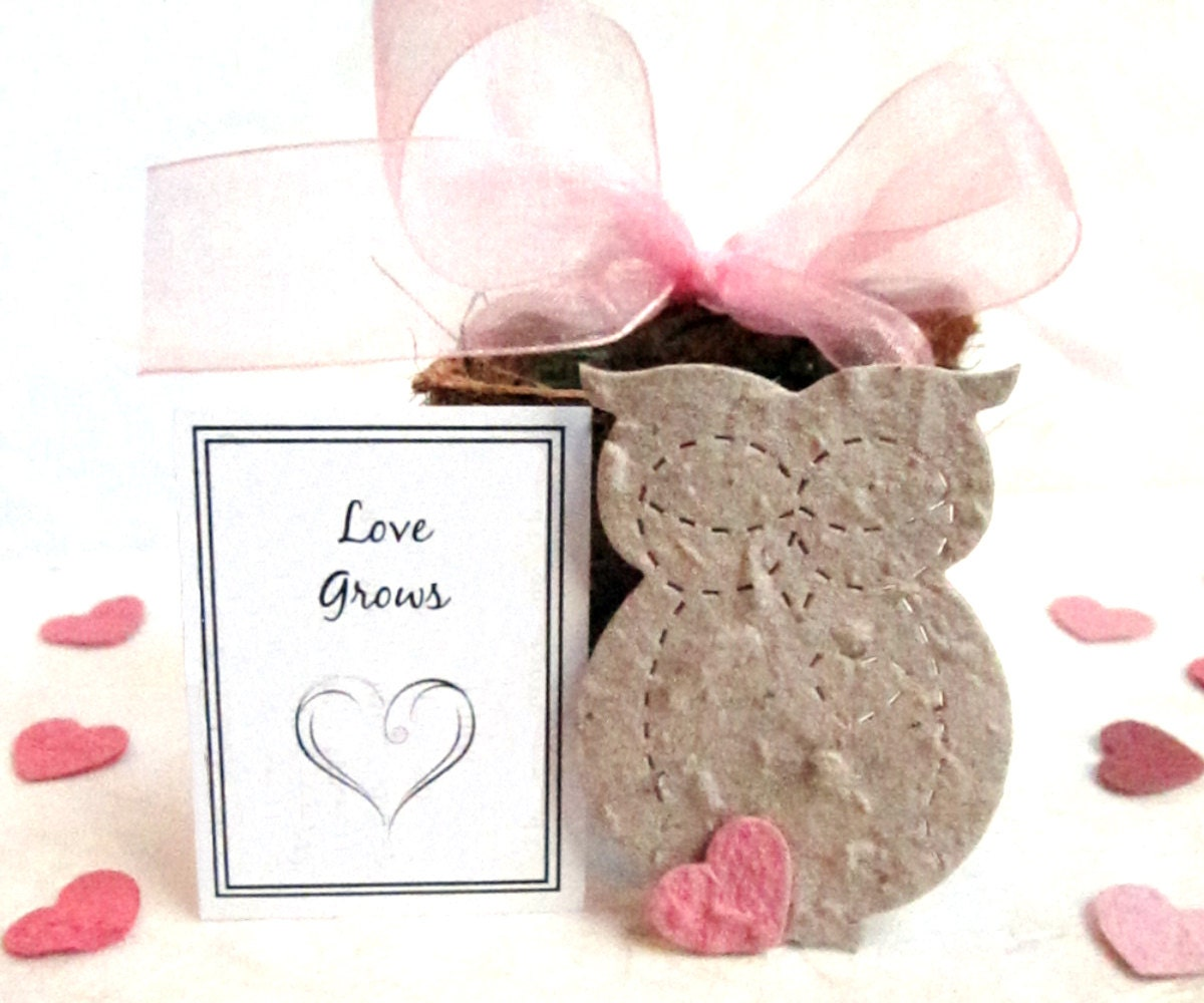 20 Owl Flower Pot Wedding Favors PLantable Paper Baby Shower