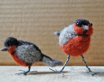 Curious needle-felted birds; felted robins; felt sculpture