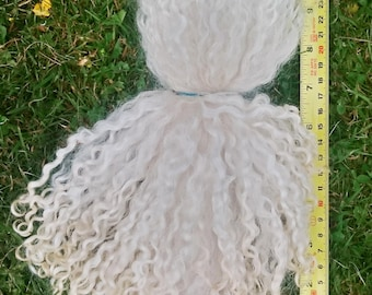 Teeswater Locks Undyed 8 - 10 inch, washed in natural springwater & separated - 100g (3.5oz)