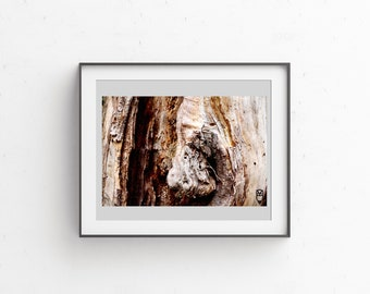 WOOD 5, fine art print fine art signed and numbered, edition of 30.