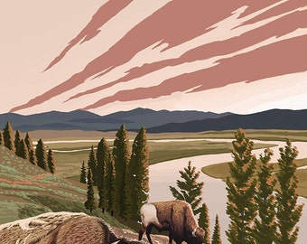 Wyoming - Yellowstone River Bison (Art Prints available in multiple sizes)