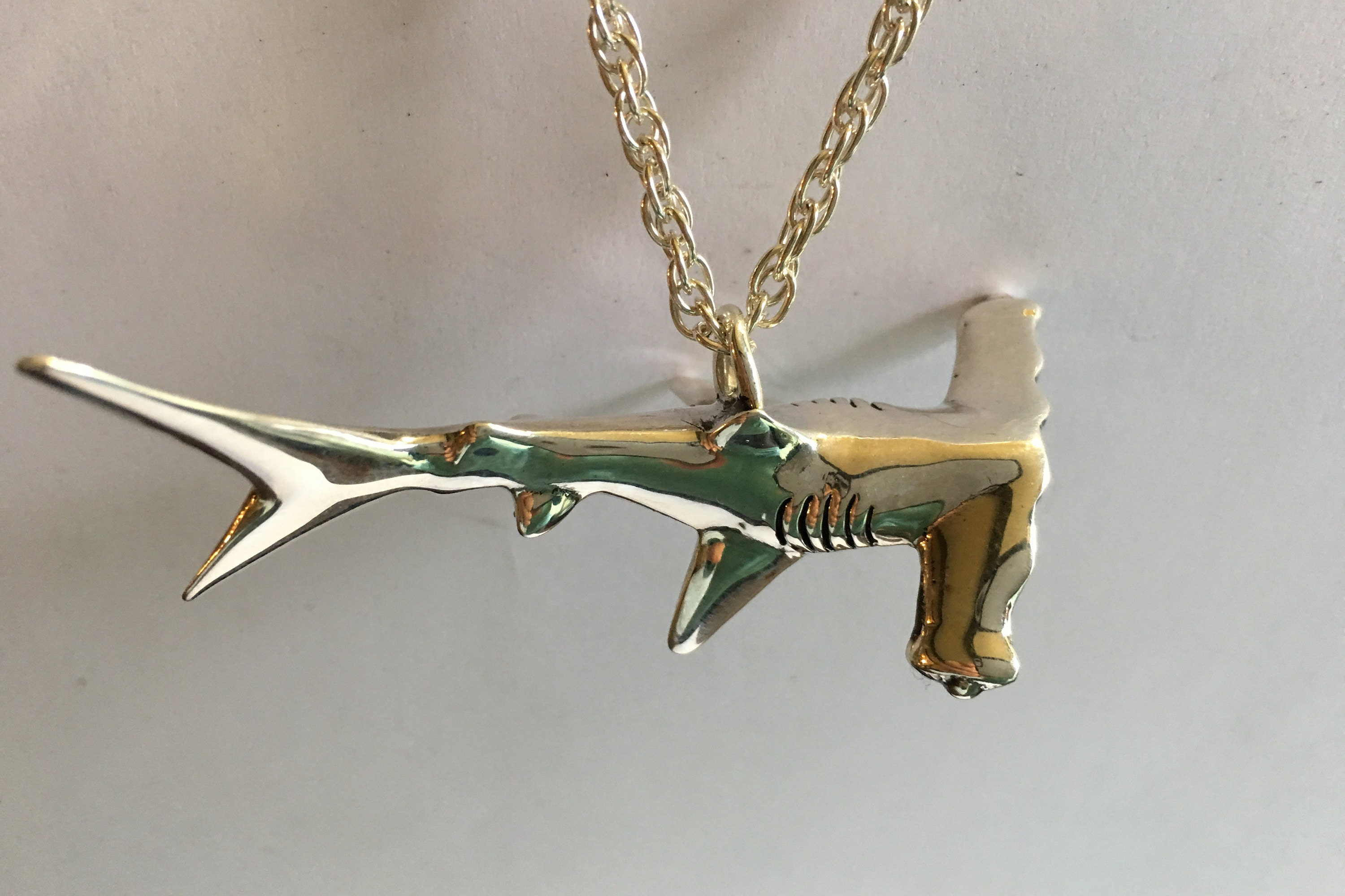 hammerhead pinterest teeth tiger pin tooth extinct sharks necklace shark