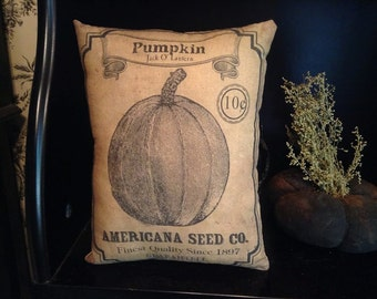 Pumpkin, American Seed Co. Pillow