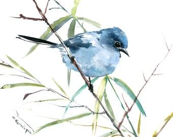 bird artwork etsy