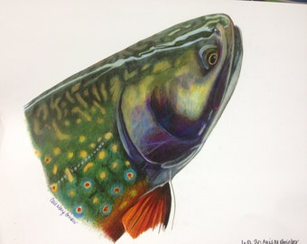 SMALL 8x10 Brook Trout Print limited edition