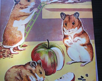 Vintage Hayes Pets Animal Poster 9 x 12 - Circa 1962