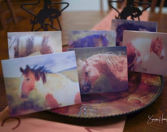 Wild Mustangs of Colorado - Sand Wash Basin Wild Mustangs - Picasso - Brave - Jigsaw - Tango - Copper - Nick - Pack of 6 - Paintings