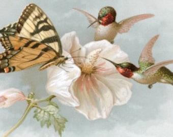 Hummingbirds and Butterfly - Cross stitch pattern pdf format