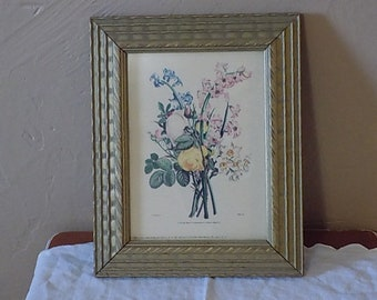 Artistic Picture Publishing Framed Flower Print - Vintage 1940's