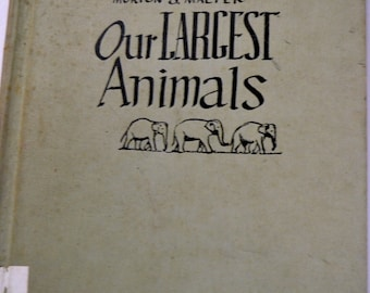 Vintage Children's Book Our Largest Animals by Morton S. Malter  Second Printing